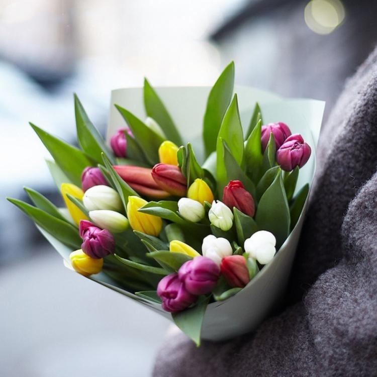 """Букет из 25 тюльпанов """"микс"""""""