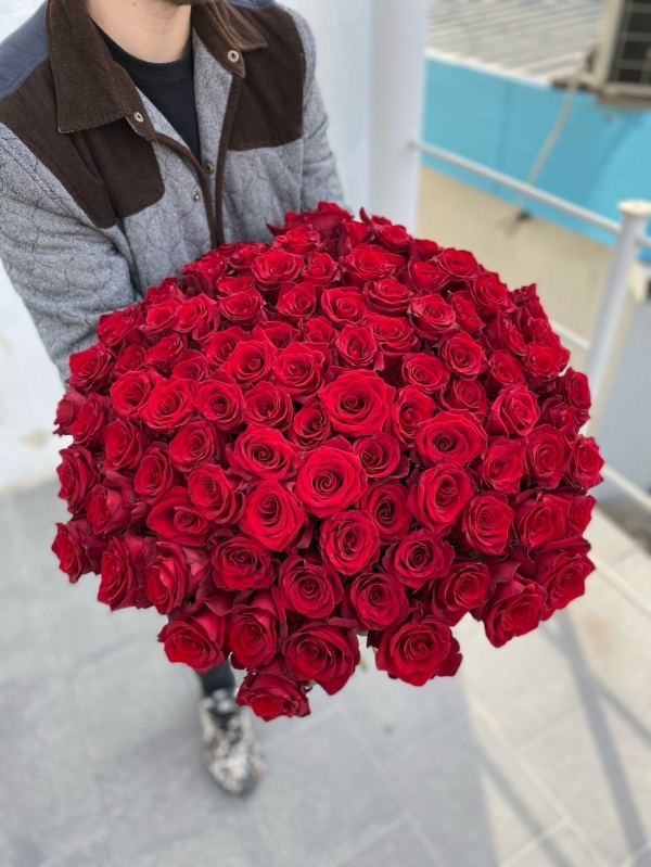 101 красная роза Россия
