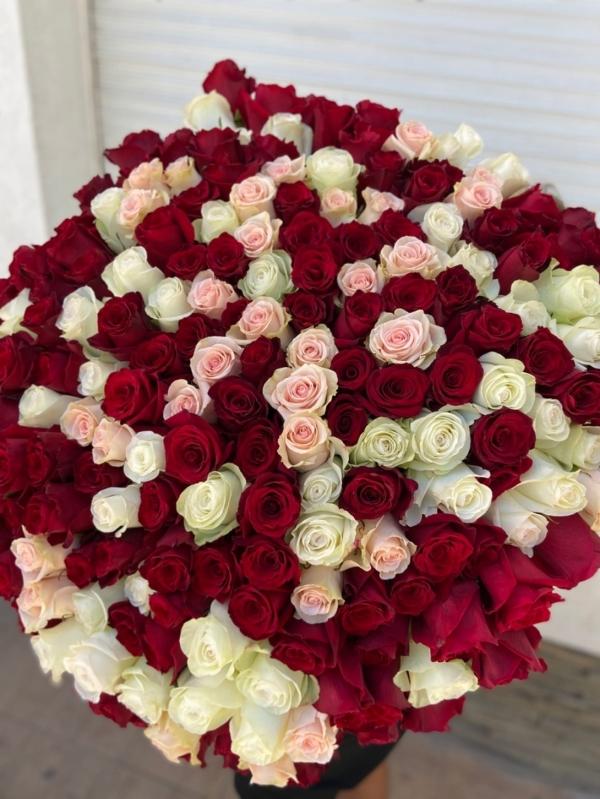 Букет 201 роза импортная Premium